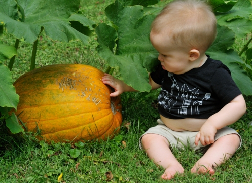 Noah with his pumpkin